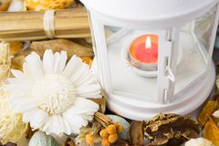 Dried flowers with lamp and candle Royalty Free Stock Image