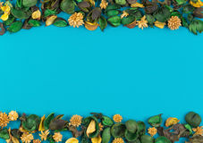 Dried flowers and leaves border frame on blue background. Top view, flat lay. Royalty Free Stock Photo