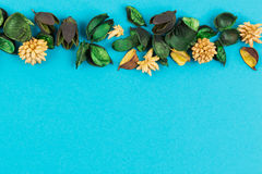 Dried flowers and leaves border frame on blue background. Top view, flat lay. Royalty Free Stock Images