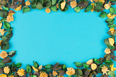Dried flowers and leaves frame on blue background. Top view, flat lay. Royalty Free Stock Photography