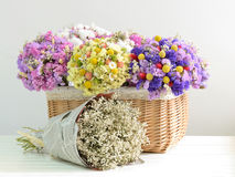 Dried flowers Stock Photos