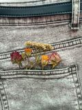 Dried Flowers. The picture of dried flowers in denim pocket Stock Photo