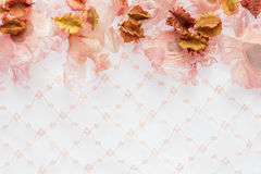 Dried flowers with pink lace as background with space. Stock Image