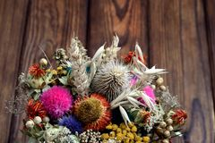 Dried flowers and plants. Dried flowers and various plants are collected in a bouquet stock images