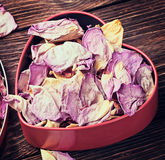 Dried flowers in a red box toning Stock Images