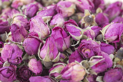 Dried flowers roses Stock Image