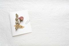 Dried flowers of roses on a white paper. pink. yellow Stock Photography