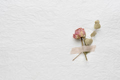 Dried flowers of roses on a white paper. pink. yellow Stock Images