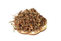 Dried flowers St. John`s wort for a useful herbal tea on a white Stock Photo