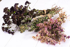 Dried Flowers and Stems of Thyme Royalty Free Stock Photography