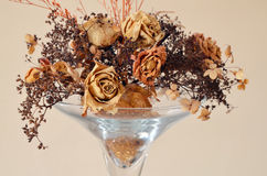 Dried flowers in a vase Royalty Free Stock Photos