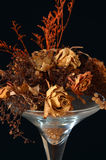 Dried flowers in a vase Stock Photos