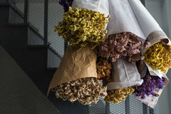 Dried flowers on wall Stock Images