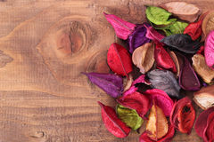 Dried Flowers. On wood.free space for your text Royalty Free Stock Photos