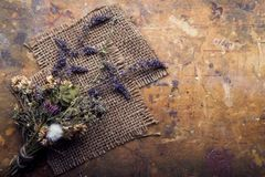 Dried Flowers on a wooden background Autumn Still Life Royalty Free Stock Image