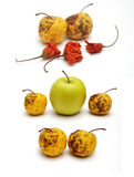 Dried and fresh apple with dried pepper Royalty Free Stock Image