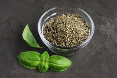 Dried and fresh basil. On dark background Stock Photos