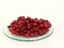 Dried and fresh cranberries Stock Image