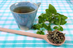 Dried and fresh lemon balm, cup of herbal beverage on tablecloth Royalty Free Stock Photography