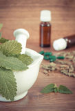 Dried and fresh lemon balm in mortar and medical capsules, choice between pills and alternative medicine Stock Photos