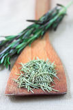 Dried and fresh rosemary Royalty Free Stock Image