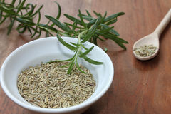 Dried and fresh Rosemary Royalty Free Stock Photos