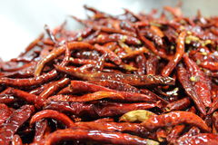 Dried and fried Spice Red Hot Chilly Royalty Free Stock Image