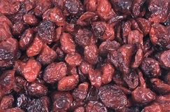 Dried fruit - cranberry Stock Photography