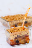 Dried fruit crumble Stock Images