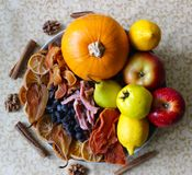 Dried fruit, fresh fruit and candied fruit stock photo