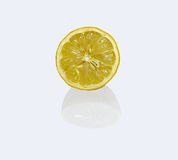 Dried fruit of lemon Royalty Free Stock Photography