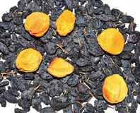 Dried fruit like design Stock Photography