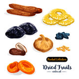 Dried fruit, natural sweets icon set, food design. Dried fruit cartoon icon set. Raisins, date, apricot, prune, fig, pineapple, banana and damson fruit isolated Stock Photo
