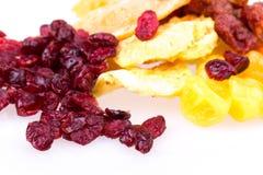 Dried fruit pineapple, lemon, walnut, cranberry Stock Images