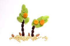 Dried fruits and almonds - symbols of Jweish holiday Tu Bishvat Royalty Free Stock Images