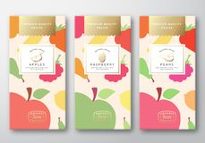 Dried Fruits Label Packaging Design Layout Collection. Abstract Vector Paper Box with Fruit and Berries Pattern royalty free illustration