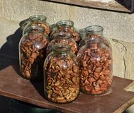 Dried fruits in the three-liter jar. Dried apples, cut into slic. Es Royalty Free Stock Image