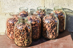 Dried fruits in the three-liter jar. Dried apples, cut into slices.  Stock Photo