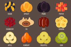 Dried fruits. Vector set of dried fruits. Flat style Stock Images