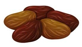Dried fruits on white background. Illustration royalty free illustration