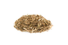 Dried Fumaria officinalis Royalty Free Stock Photo