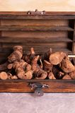 Dried galangal root Stock Images