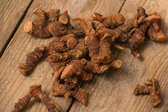 Dried galangal root Royalty Free Stock Photos