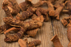 Dried galangal root Royalty Free Stock Photography