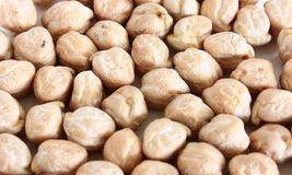 Dried Garbanzo Beans Chickpeas Stock Images