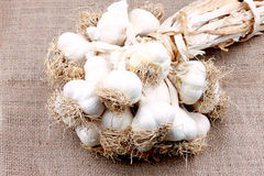 Dried garlic Royalty Free Stock Image