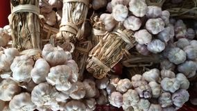 Dried Garlic. Dry foodstuff. Stock Images