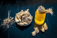 Dried ginger with oil and nutmeg powder. Dried ginger or soth or Zingiber officinale with nutmeg powder and its extracted oil for good digestion and medicine Royalty Free Stock Photo