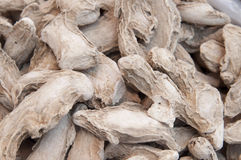 Dried ginger root Stock Photography