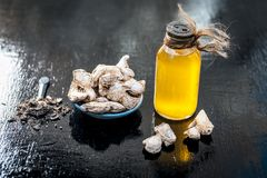 Dried ginger with oil and nutmeg powder. Dried ginger or soth or Zingiber officinale with nutmeg powder and its extracted oil for good digestion and medicine Stock Photography